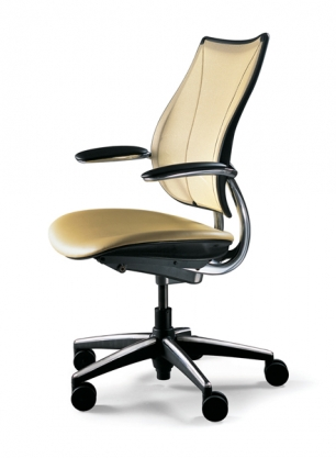 Conference/task chair Humanscale